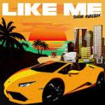 Shani Rudeboy – Like Me @ShaniRudeboy